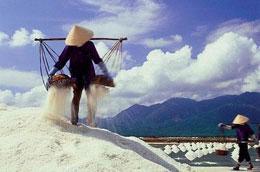Thời gian qua, giá muối giảm mạnh gây khó khăn trong sản xuất và đời sống của diêm dân.