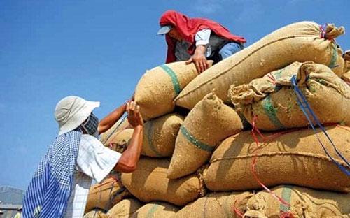 Theo tin từ Hiệp hội Lương thực Việt Nam (VFA), từ ngày 1/12-31/12/2012,  cả nước xuất khẩu được 235.163 tấn gạo, trị giá FOB 107,652 triệu USD,  trị giá CIF 113,417 triệu USD.