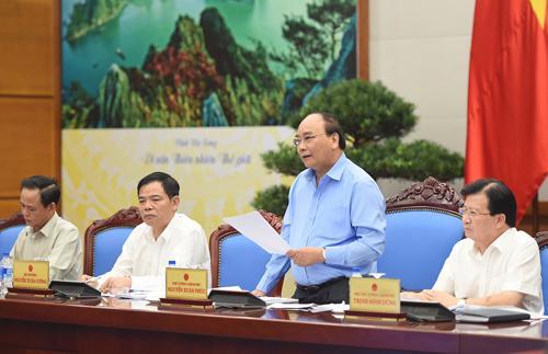 Thủ tướng biểu dương chủ trương xã hội hóa nghề rừng đã dần được hiện thực hóa, nâng cao thu nhập, sinh kế cho người làm nghề rừng.