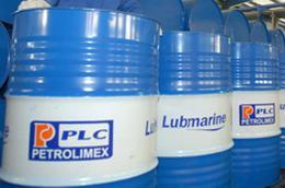 Lãi cơ bản trên mỗi cổ phiếu (EPS) 6 tháng đầu năm 2010 của PLC đạt 4.583 đồng.