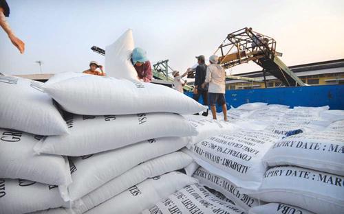 Sau khi thu hoạch xong vụ Hè Thu, nguồn cung lúa gạo trong nước đã xuống  mức thấp nhất.