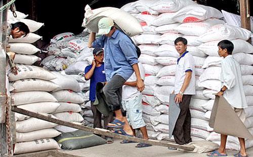 Năm 2011, xuất khẩu gạo của Việt Nam đạt mức 7,105 triệu tấn, theo thống kê của VFA.
