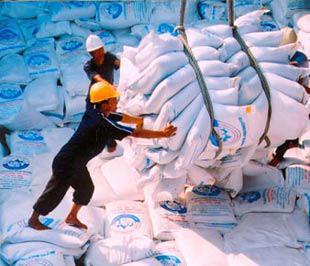 Từ một nước thiếu lương thực VIệt Nam đã vươn lên đứng thứ hai thế giới về xuất khẩu gạo.