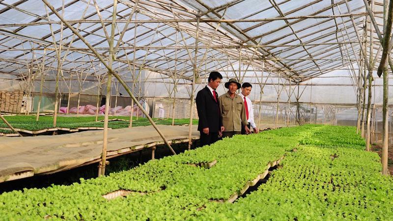 """Agribank chính là ngân hàng giàu kinh nghiệm nhất trong đầu tư phát triển """"Tam nông""""."""