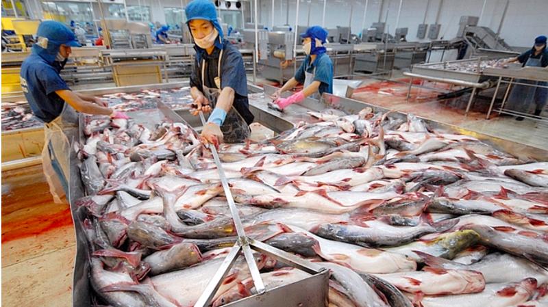 Những năm gần đây, Việt Nam xuất khẩu khoảng 60 triệu USD/năm giá trị thủy sản sang Campuchia - ảnh minh họa