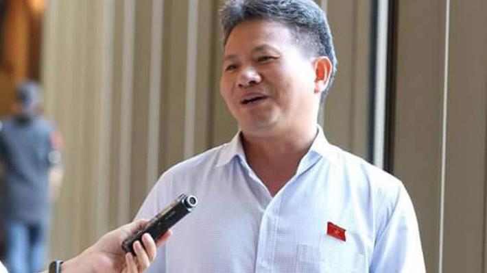 Uỷ viên Thường trực Uỷ ban Kinh tế, đại biểu Quốc hội Đỗ Văn Sinh