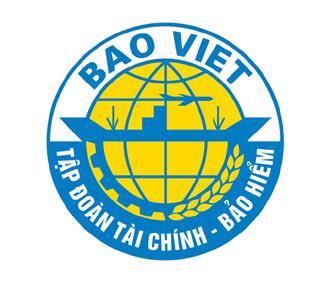 Bảo Việt đang hướng tới kinh doanh đa ngành, trong đó họat động chính là bảo hiểm và dịch vụ tài chính, ngân hàng.