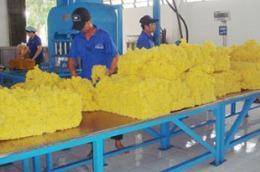 Công ty Cổ phần Cao su Phước Hòa (mã PHR) công bố tổng doanh thu năm 2009 đạt 1.039,613 tỷ đồng, lợi nhuận sau thuế đạt 260,588 tỷ đồng.