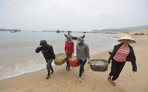 Các nhân khẩu trong các gia đình ngư dân sẽ được hỗ trợ 15 kg gạo/tháng với thời hạn 1,5 tháng.<br>