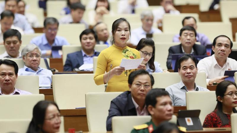 Đai biểu Cao Thị Giang chất vấn Bộ trưởng Lê Vĩnh Tân.