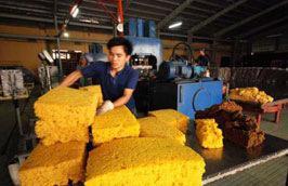 Dự báo sản lượng xuất khẩu của ngành cao su Việt Nam năm 2012 sẽ không cao hơn đáng kể so năm 2011, vào khoảng 800.000 tấn.
