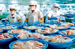 Cá tra Việt Nam đã có mặt ở 127 quốc gia và vùng lãnh thổ.