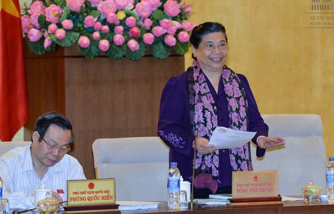 Phó chủ tịch Quốc hội Tòng Thị Phóng phát biểu tại phiên giám sát.