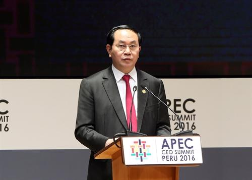 Chủ tịch nước Trần Đại Quang phát biểu tại APEC hôm 20/11.<br>