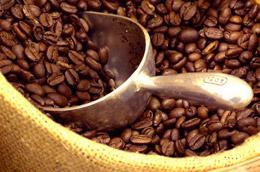 Cà phê là mặt hàng giảm mạnh về kim ngạch xuất khẩu trong quý 1/2010.