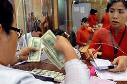 Các tổ chức tín dụng phải xây dựng và gửi báo cáo cho Ngân hàng Nhà nước về nguồn ngoại tệ để trả nợ của khách hàng trong quý 4/2010 và quý 1/ 2011.