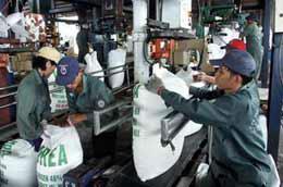 Phân bón giả, kém chất lượng xuất hiện nhiều trên thị trường đã làm ảnh hưởng đến các doanh nghiệp làm ăn chân chính.
