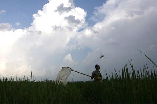 Không dễ để nông dân tiếp cận vốn vay cho sản xuất - Ảnh: Reuters.