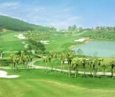 Chỉ trong 2 năm rưỡi, từ tháng 9/2004 đến tháng 3/2007, UBND Tỉnh Long An chấp thuận đầu tư cho 13 dự án sân golf, đồng thời tiếp nhận hồ sơ 5 dự án sân golf khác.