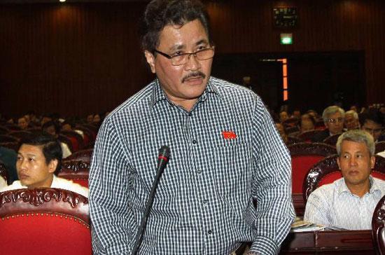 Đại biểu Nguyễn Ngọc Đào: Khó là chúng ta bàn đến Hà Nội mở rộng - Ảnh: CTV.