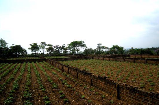 Đề xuất này nhằm tạo điều kiện cho người dân trong việc thực hiện thủ tục hành chính về đất đai.