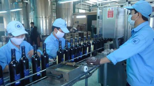 Xưởng sản xuất rượu vang của Thực phẩm Lâm Đồng.