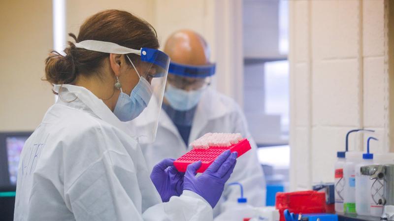 Kết quả thử nghiệm trong phòng thí nghiệm cho thấy thuốc xịt mũi AM-301 giúp giảm đáng kể nguy cơ nhiễm virus qua các tế bào niêm mạc mũi - Ảnh: Getty Images