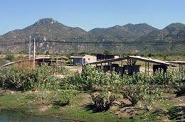 Khu đất dự kiến xây khu liên hợp thép Cà Ná vẫn bỏ hoang sau hai năm động thổ.