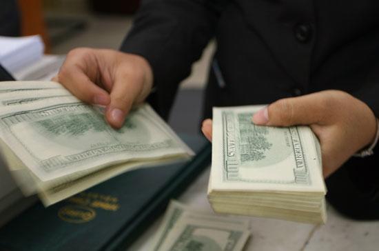 Theo tờ trình của Chính phủ, trong 8 tháng đầu năm 2010, tăng trưởng tín dụng bằng VND khoảng 11,2%, trong khi bằng ngoại tệ lên tới khoảng 40,1%.