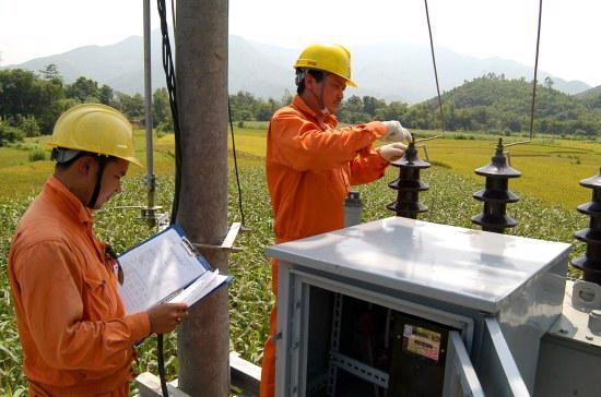 Ngành nghề kinh doanh chính của các Tổng Công ty mới là sản xuất và kinh doanh điện năng, cơ khí điện lực, đầu tư và quản lý vốn các dự án nguồn điện,…