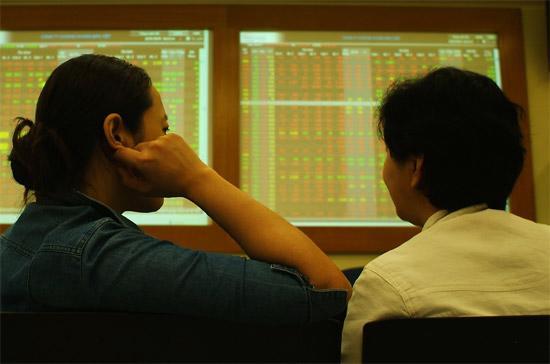 Bức tranh doanh số của các công ty chứng khoán năm 2009 đang dần hé lộ - Ảnh: Quang Liên.