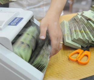 Với chính sách hỗ trợ lãi suất, kích cầu của Chính phủ, tăng trưởng tín dụng trên thực tế đã tăng nhanh, nhất là trong quý 2/2009 và sau 7 tháng đầu năm, mức tăng đã là 22,76% - Ảnh: Quang Liên.