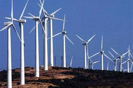 Kết quả điều tra sơ bộ của Bộ Công Thương cho thấy, 8,6% diện tích đất của Việt Nam được đánh giá là những vùng có tiềm năng lớn để phát triển năng lượng gió, nhất là các tỉnh phía Nam, ước tính sản lượng vào khoảng trên 1. 780 MW.