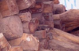 Các thị trường chính nhập khẩu đồ gỗ của Việt Nam như châu Âu và Bắc Mỹ là nơi mà luôn đòi hỏi sản phẩm phải có nguồn gốc từ rừng được quản lý bền vững.