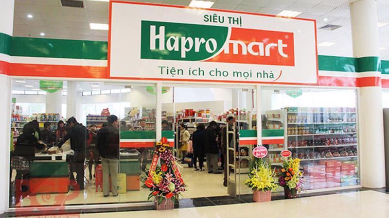 Hoạt động kinh doanh chính của Hapro chưa đủ tạo sức hấp dẫn bằng quyền sử dụng đất đai của doanh nghiệp này.