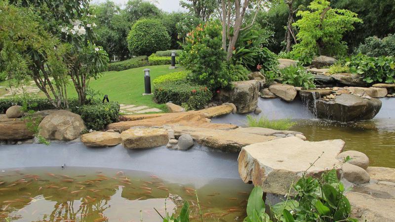 Khuôn viên nhà máy xanh của Heineken Việt Nam, với nguồn nước thải đã qua xử lý cung cấp nước cho các hồ cá.