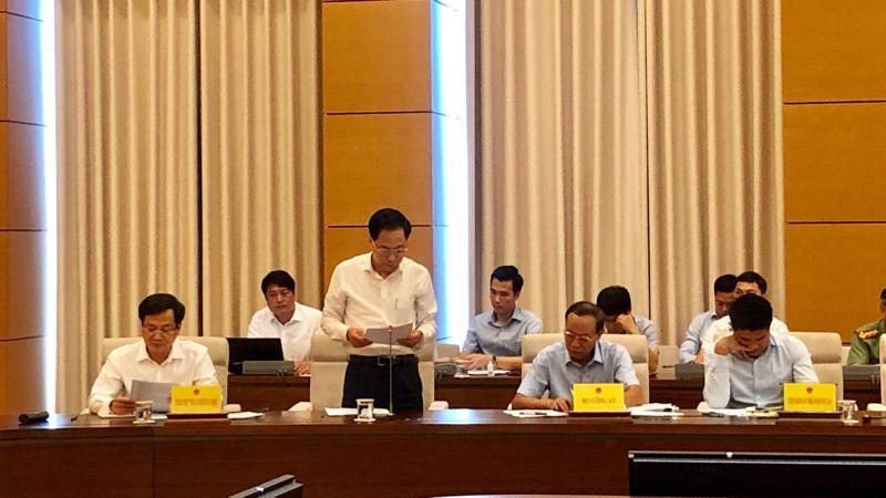 Phó tổng thanh tra Chính phủ Trần Ngọc Liêm trình bày báo cáo
