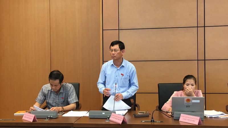 Đại biểu Nguyễn Ngọc Phương (Quảng Bình) tại phiên thảo luận tổ.