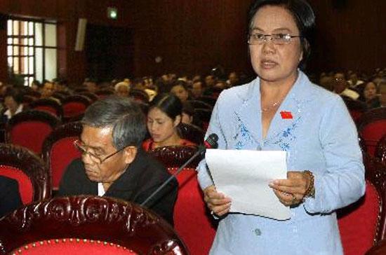 Quốc hội thảo luận về dự án Luật bảo vệ quyền lợi người tiêu dùng - Ảnh: TTXVN.