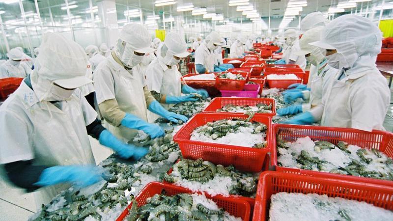 Ngân hàng Thế giới dự kiến tăng trưởng kinh tế của Việt Nam ở mức 6,7% trong năm nay.