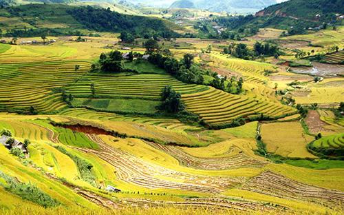 """<font face=""""Arial, Verdana""""><span style=""""font-size: 13.3333px;"""">Ruộng bậc thang tại Lai Châu được xem là có sức hút đặc biệt đối với mỗi du khách khi đặt chân tới mảnh đất miền núi này.</span></font>"""