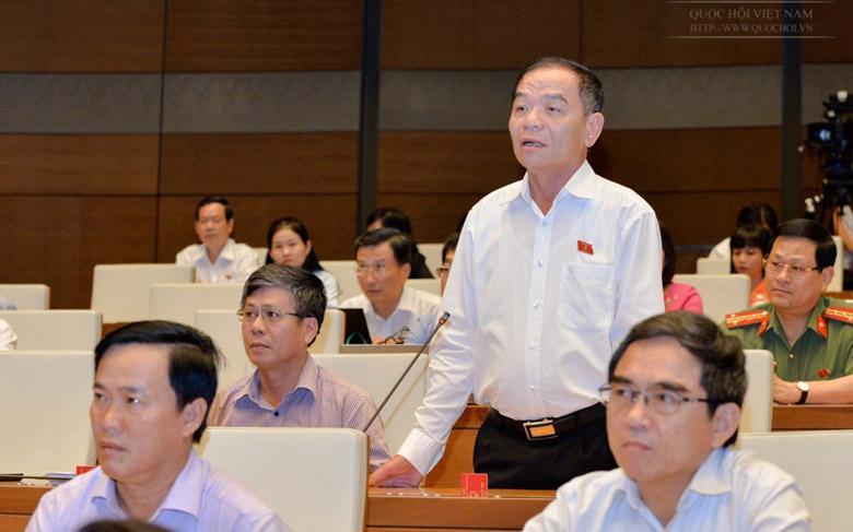 Đại biểu Lê Thanh Vân phát biểu tại nghị trường.