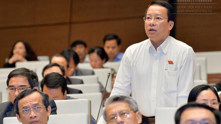 Đại biểu Thái Trường Giang (Cà Mau) đã đề nghị lùi thông qua luật về đặc khu.