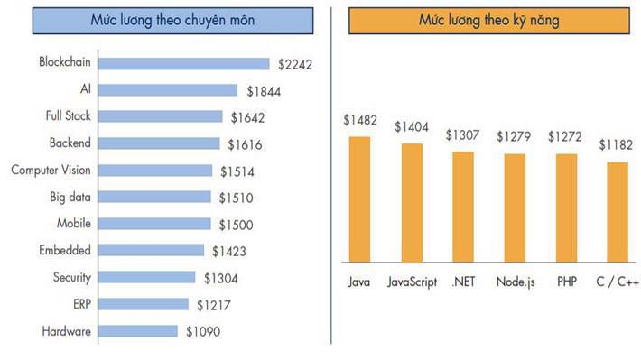 Mức lương của kỹ sư công nghệ thông tin tại Việt Nam xét theo chuyên môn và kỹ năng - theo báo cáo của VietnamWorks.