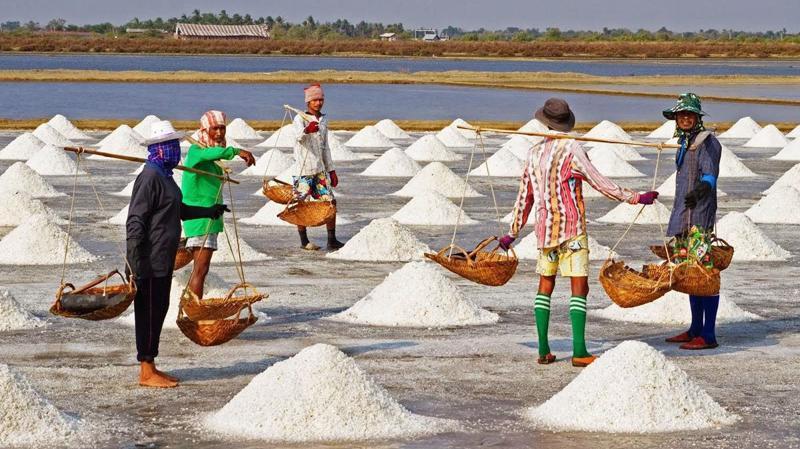 Hiện tại giá muối cao gấp 2 – 3 lần so với năm 2018, nên diêm dân có lãi khoảng 40 - 50 triệu đồng/ha/vụ.