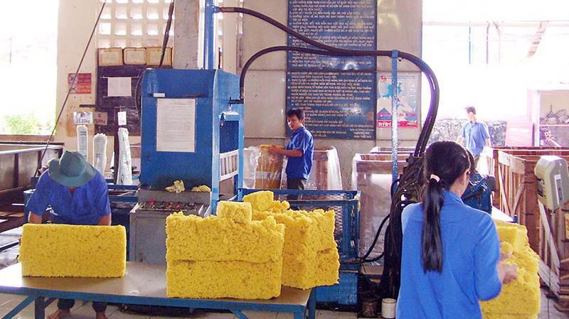 Ngành cao su vẫn tồn tại một nghịch lý là xuất khẩu nhiều với giá trị thấp, nhưng lại tăng nhập khẩu cao su phục vụ chế biến sâu.