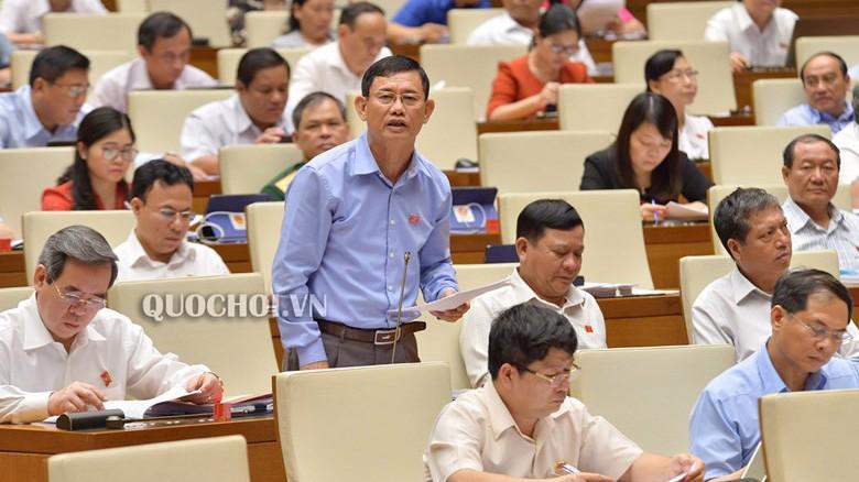 Đai biểu Nguyễn Ngọc Phương phát biểu tại phiên giám sát.