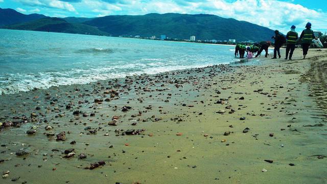 Ngày càng nhiều doanh nghiệp xin nhận chìm vật chất xuống đáy biển.