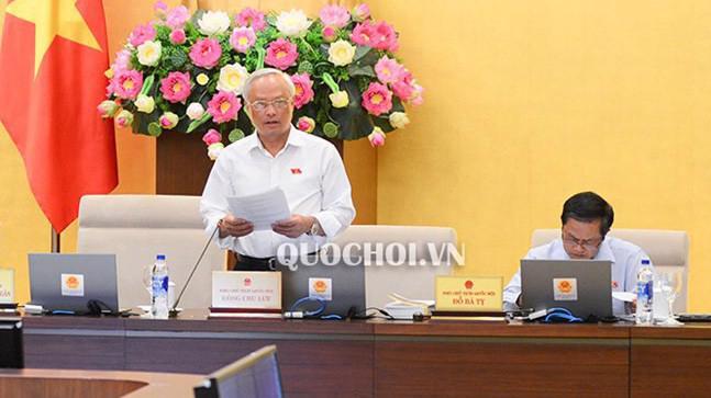 Phó chủ tịch Quốc hội Uông Chu Lưu phát biểu tại phiên thảo luận.