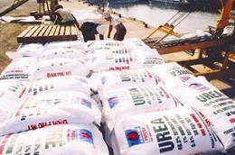 Ảnh hưởng của khô hạn và xâm nhập mặn cũng đã tác động đến nhu cầu sử dụng phân bón cho các loại cây trồng chính của nước ta như lúa, cà phê, hạt tiêu...